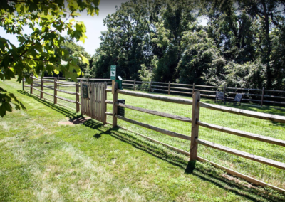 Pet-friendly dog park for Pointe North residents and pets in Bethlehem, PA apartment rentals